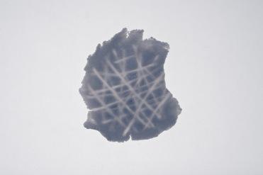 Diatomeae 2
