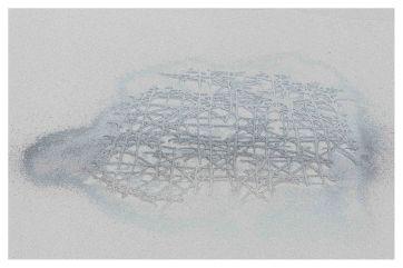 Křemitka euplectella (2)